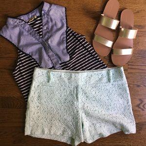 ANN TAYLOR Marisa Mint Garden Lace Shorts